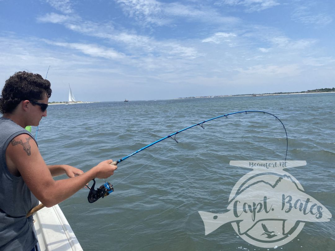 Hosted a repeat group from Ohio, boated a few spanish mackerels just under 5lbs, several species of sharks including two hammerheads, these young boys live battling the toothy critters!