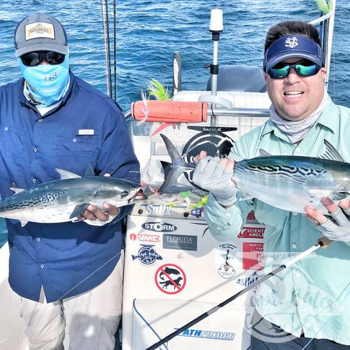 I was honored to be asked to take 2 national percipients of Project Healing waters Fly Fishing inc. fishing for 3 days during the Cape Lookout False albacore festival.  Nick is from Atlanta and Greg from Sleepy hollow NY. I couldn't have asked for a couple better guys to have on the boat! We laughed, talked smack, and caught big fish until their arms hurt!  Albies were scarce Thursday, but the shrimp boats were out and the sharks were plentiful! Site casting to these sea monsters with heavy fly tackle is intense! Both guys landed sharks over 6' and had lots of eats and hook ups!
