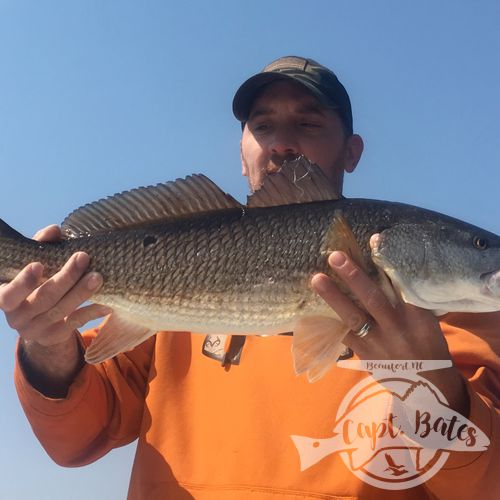 Topwater redfish mixed in with trout and striped bass! Cant beat fishing the wood around New Bern!