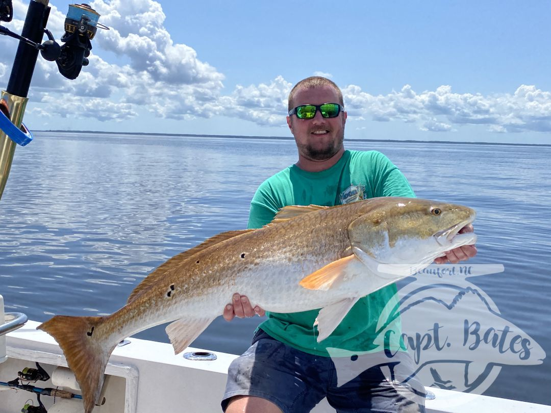 Finally the big fan shut off and we were able to get back after the trophy red fish! Hurricane 2 years ago and a bad nor Easter last year kept us from getting after em! But the Prevette's wait finally paid off with gold!