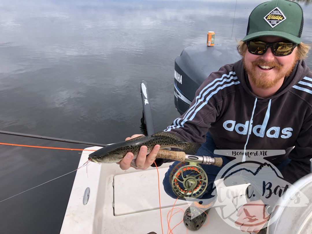 Awesome speckled trout bite on fly rod and ultra lights! So much bait around and the fish with really stacked up thick! Trout fishing is incredible right now and should just get better!