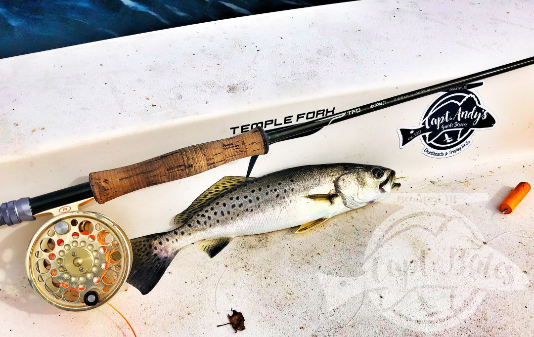 Speckled trout and fly rods, go together like peanut butter and jelly!