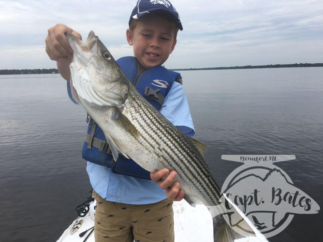 New Bern North Carolina topwater rockfishing at its finest!