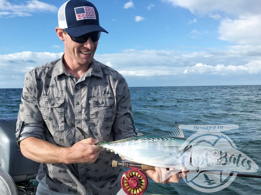 False albacore busting and eating a fly will change your life forever!