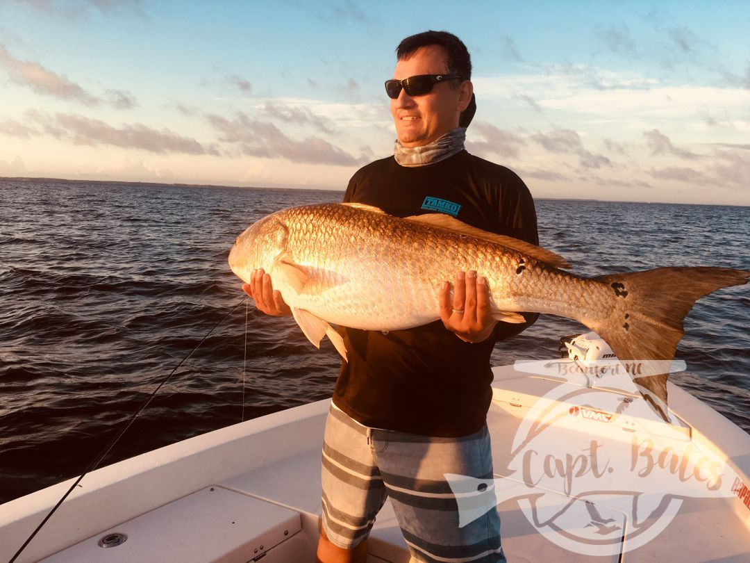 Beautiful evening citation trophy red drum as the sun sets in the background on the lower Neuse River.